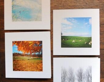 Blank Inside Photo Cards Four Seasons Second Set
