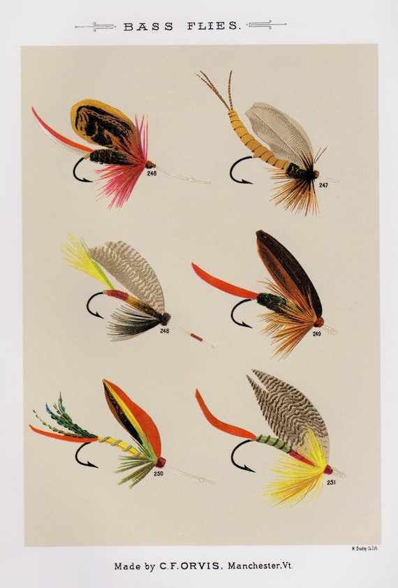 Fishing decor fly fishing print bass flies print fishing lure for Fly fishing decor