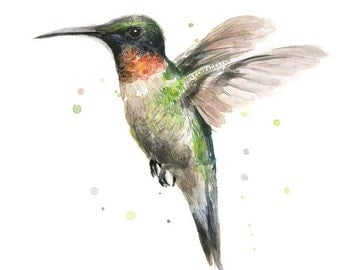 Hummingbird Watercolor Art Print, Ruby-Throated Hummingbird Painting, Hummingbird Art, Hummingbird Print, Animal Painting, Illustration