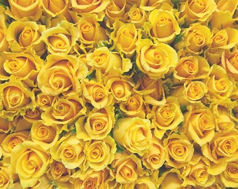 Flower Market Series: Yellow Roses II - Photographic Print floral, Romantic, korea, photography, decor, art, Asia, purple, bohemian, boho