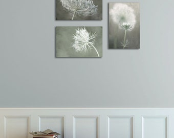 Home Decor Art Prints, Neutral Gray Wall Gallery Set, Housewarming Gift, Set of 3 Flower Photographs,Collection Of Prints,Queen Anne's Lace