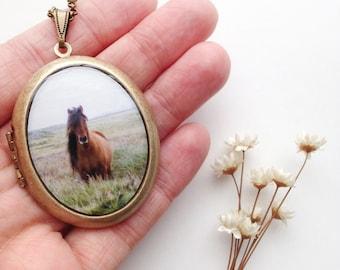 Wild Mare Locket - 'chincoteague' - Fine Art Horse Photo Brass Locket Necklace - Fertility