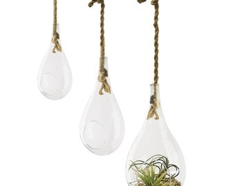 Glass Hanging Tear Drop Plant Terrarium Holder with Rope