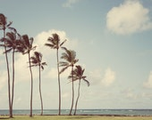 "Tropical Decor, Hawaii Art Print, Beach Decor, Landscape Photography, Palm Trees Photo, Wall Decor, Travel Photography ""Tropicalia"""