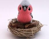 Chaffinch Needle Felted British Bird
