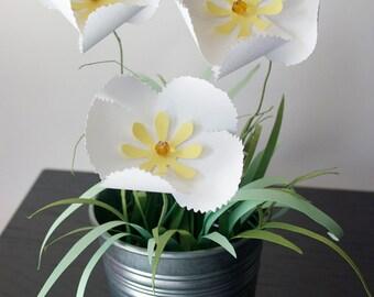 Mini Potted Heirloom Poppies Paper Flower Garden Arrangement, Wedding Decor, Flower Decor, Wedding Decoration, Mothers Day Gift