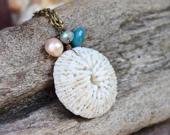 Hawaiian Jewelry - Seashell Necklace made in Hawaii - Shell Jewelry from Hawaii - Ocean Inspired Seashell Jewelry - Hawaii Shell Necklace