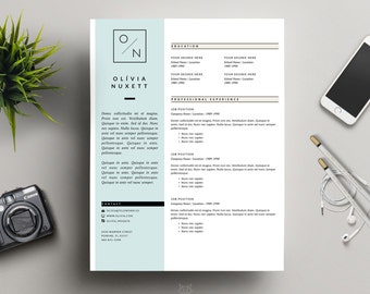 Professional Resume Example Excel Pk Resume Template S A L E  Cv Template Cover Reference Page Resume Pdf with Sample Hr Resume Resume Template  S A L E    Ms Word Cv Design   Page Resume Paralegal Resume Examples Word