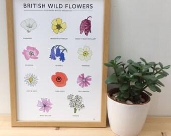 British Wild Flowers print