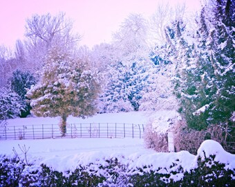 Snow print - Tree print - Winter photography - Winter print - Snow decor - Snow photography - Snow art - Tree photo - Landscape print - Art