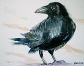Black Crow watercolor, original crow watercolor, Raven painting,  Mat included
