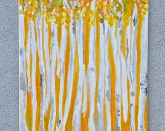 Birches in yellow scenery