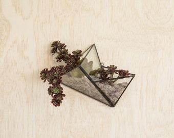 Double Tetrahedron Wall Terrarium