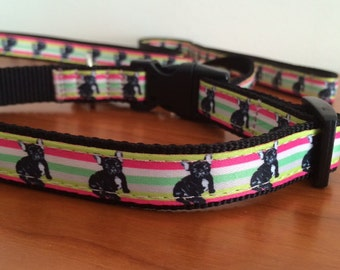 Pack: necklace and leash with french bulldogs