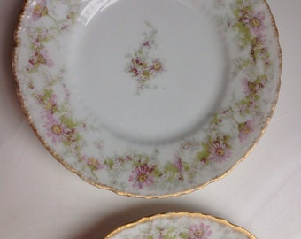 Two Limoges Dessert Plates by Theodore Haviland