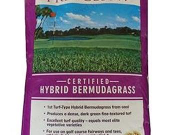 Princess 77 Bermuda Grass Seed