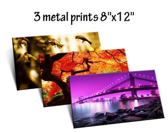 "Stunning Images on Metal Photo Prints - 8""x12"" x 3"