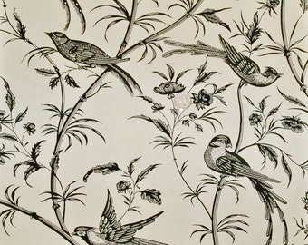 BRUNSCHWIG & FILS BENGALI Birds Toile Fabric 10 Yards Cream Black