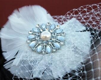 Jeweled Birdcage Veil