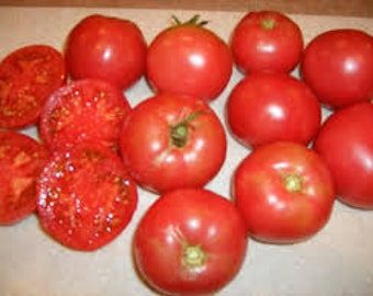 Arkansas Traveller Tomato seeds