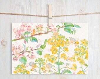Hello Spring Cherry Blossoms Art Postcard