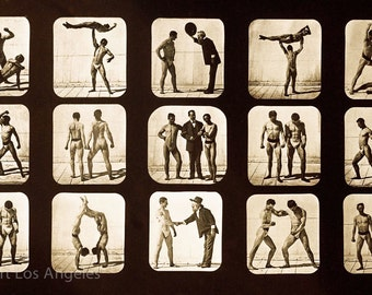 "Eadweard Muybridge Photo, ""Athletes Posturing"" 1870s"