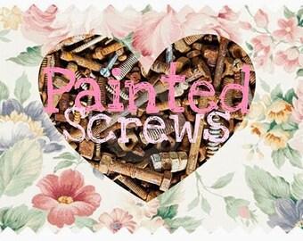 2 Painted Screws - Hardware