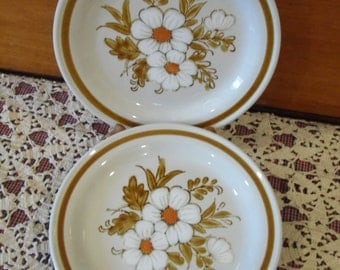 Mountain Wood Collection Stoneware Dried Flowers Design Desert Plate Set & Royal Ironstone by Royal China Dinnerware Set