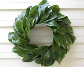 "Green Magnolia Leaf Wreath Large 20"" Size Fresh to Dry for Decorating, Natural Floral Wedding, Craft or Home Decorating, Holiday, Christmas"