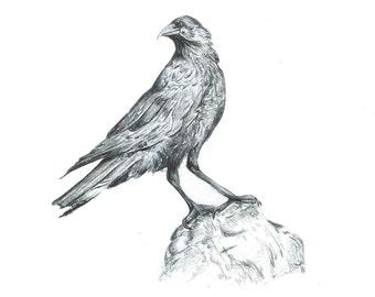 A6 Crow Card