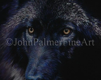Wolf in moonlight -  Greeting card from my painting of a Grey Wolf in moonlight