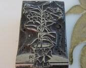 Vintage Letterpress Printers Block Easter Lily in a Pot