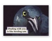 Herding Cats Magnet - Humor - Gift - Bird - Grackle - Stocking Stuffer