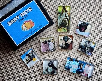 Baby Bats Magnet Set