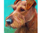Irish Terrier Art Original Acrylic Painting, 8x10, Irish Terrier looking off on Teal Background