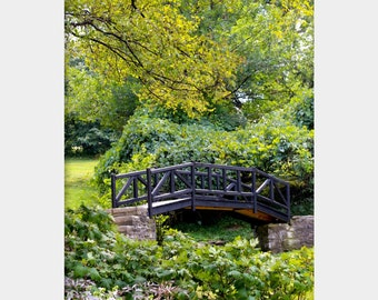 Garden Bridge Photo, Botanical Gardens Photograph, Nature Photograph, Peaceful Green Wall Decor, Green Nature Photo, Landscape Photograph