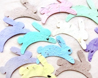 24 Plantable Seed Paper Bunny Rabbits - Peter Rabbit Baby Shower - First Birthday Party Favors - Plantable Bunnies with Personalized Cards