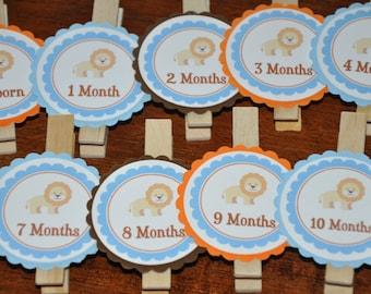 Lion Photo Clips. Lion Clips. Photo Banner. Lion. First Birthday. Set of 13. Newborn-12 Months