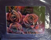 original art drawing color pencil pink roses  8.5 x 11 inch