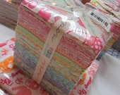 Baby Bump fat quarter bundle REDUCED