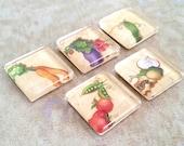 Garden Vegetables Magnet Set