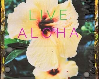 LIVE ALOHA HIBISCUS, 8x8 and Up, Giclee, Hibiscus, Flower, Aloha, Hawaii, Hawaiian Art, Hawaiian Art, Ocean Art, Wall Art