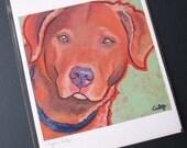 CHESAPEAKE RETRIEVER Dog 8x10 Signed Art Print from Painting by Lynn Culp