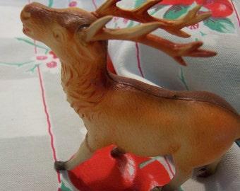 little brown buck deer