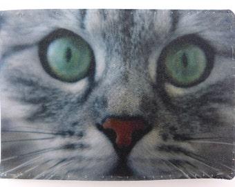 Oyster card holder, bus pass holder, travel card holder, wallet. Cat photo print. Card wallet, Oyster card wallet, credit card holder