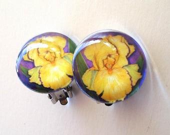 Iris Flower Clip On Earrings Yellow Gold Iris Art Glass