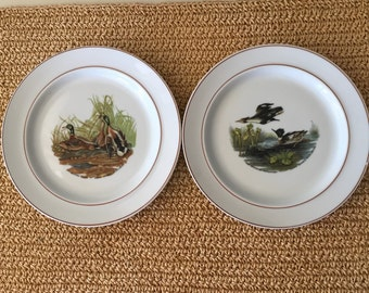JKW  James Audobon Bird Plates