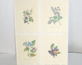 Vintage Flower Print - Floral Print Wall Hanging - 4 Flower Print Cards - 8 x 10 Flower Print - Vintage Home Decor - Printed In Italy