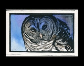 Barred Owl hand painted linocut