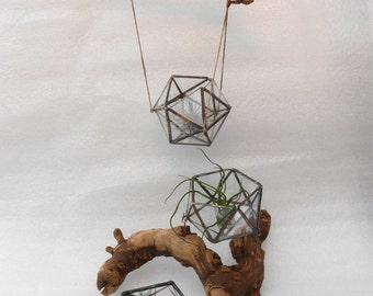 Geometric Terrarium - Icosahedron (20 triangular faces) - glass terrarium for indoor gardening (or airplant) - Indoor modern hanging planter